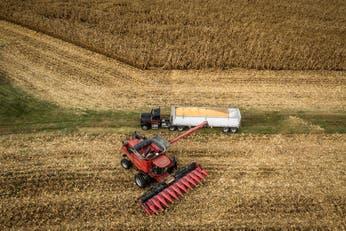 Biocombustibles: el Gobierno decidió aumentar hasta un 90% el precio